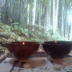 鎌倉「報国寺」竹の庭があるお寺☆