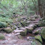 自然の宝庫☆御岳山に行ってきました!