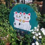 浅草 今戸神社に行って来ました!
