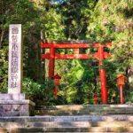 箱根の歴史と自然を楽しむオススメ観光スポット6選