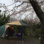 コールマンのテントとタープはセットで揃えると美しい!
