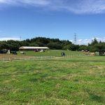 成田ゆめ牧場ファミリーオートキャンプ場の全貌を徹底レポート